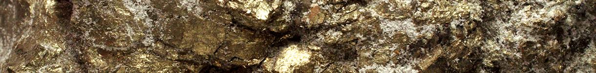pgm miners- eurasia mining