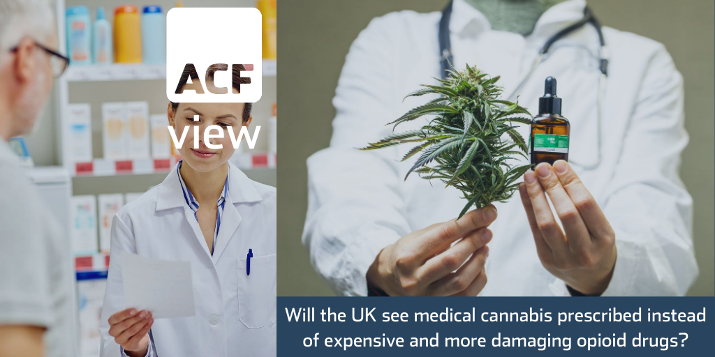 Will the UK see medical cannabis prescribed instead of expensive and more damaging opioid drugs