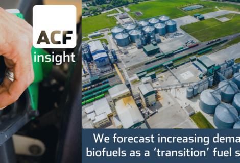 The biofuels (ethanol) market